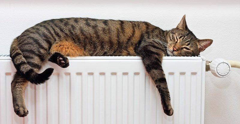 per riscaldare casa devi amare il tuo impianto