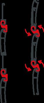 Funzionamento sistema Lupin